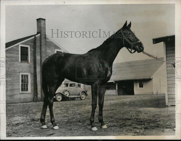 1932 Press Photo Kentucky Derby candidate Delivered - nes27218 - Historic Images