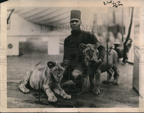 1921 Press Photo Two lion cubs with Sir Godfrey Archer in Sudan - Historic Images