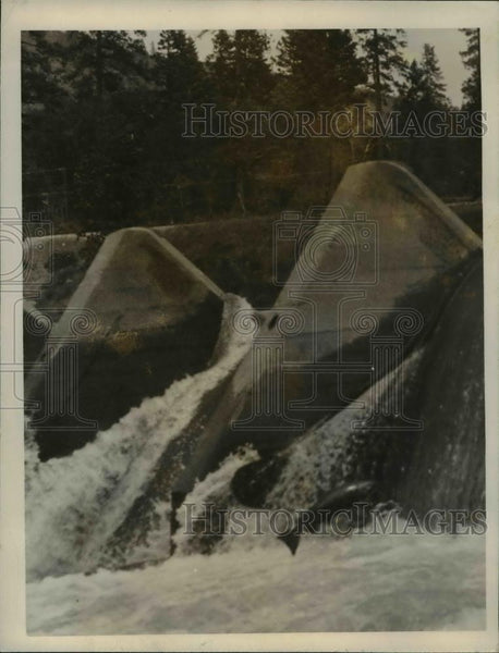 1927 Press Photo View of Dam Showing Salmon Leaping out of Water at Rogue River - Historic Images