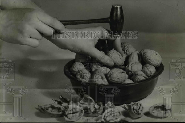 1935 Press Photo Harvesting walnuts in the Pacific northwest - orb59406 - Historic Images