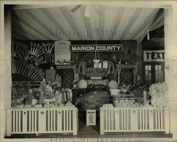 1929 Press Photo Marion County Booth at State Fair - orb18222 - Historic Images