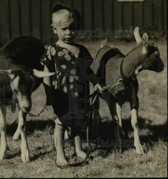 1936 Press Photo Tommy Gribbke w/ his goats that won children's livestock class. - Historic Images
