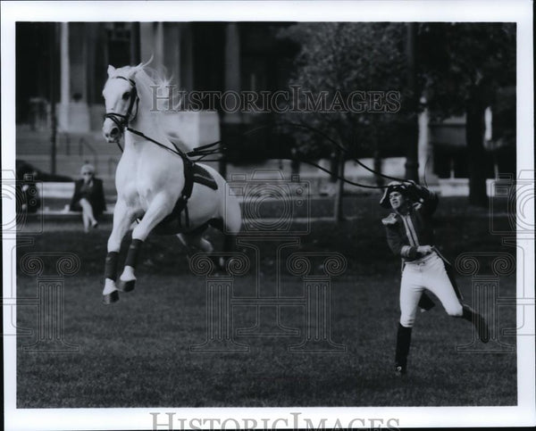 1992 Press Photo Lipizzaner Horse - spa21732 - Historic Images