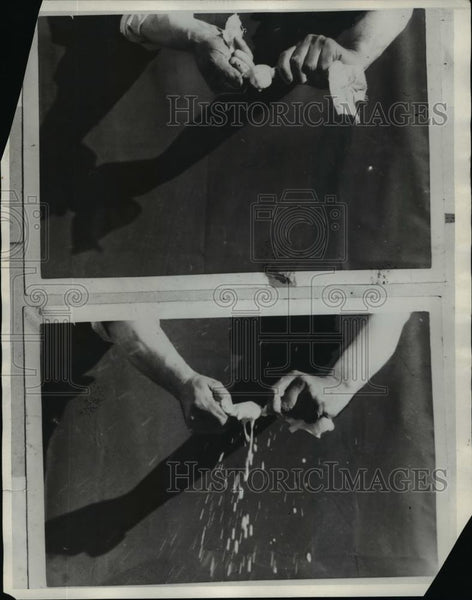 1930 Press Photo Milk Curd Squeezing Through Cheesecloth - nef13790 - Historic Images