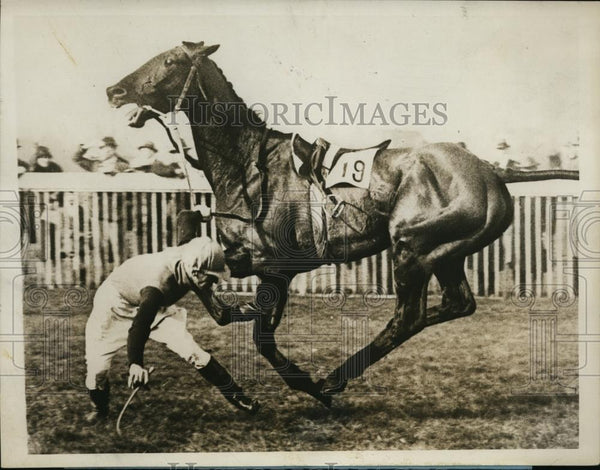 1928 Press Photo Ruedyman throws jockey J Weymes in Hurst Trial Handicap - Historic Images