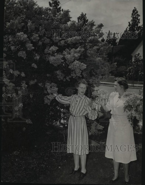 1948 Press Photo Lilac Pacific Parade, Mrs W.W. Trumbull, Rocey Kilmer - Historic Images