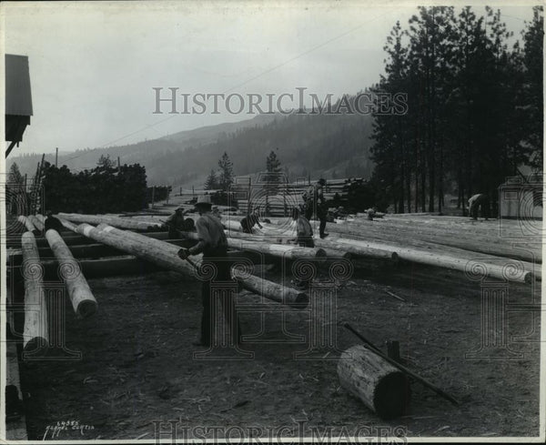 Press Photo Workers preparing cedar poles for treatment at Clearwater yard - Historic Images