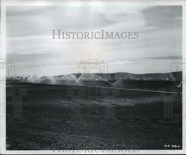 Press Photo Sprinkler type irrigation watering sugar beet and corn fields - Historic Images