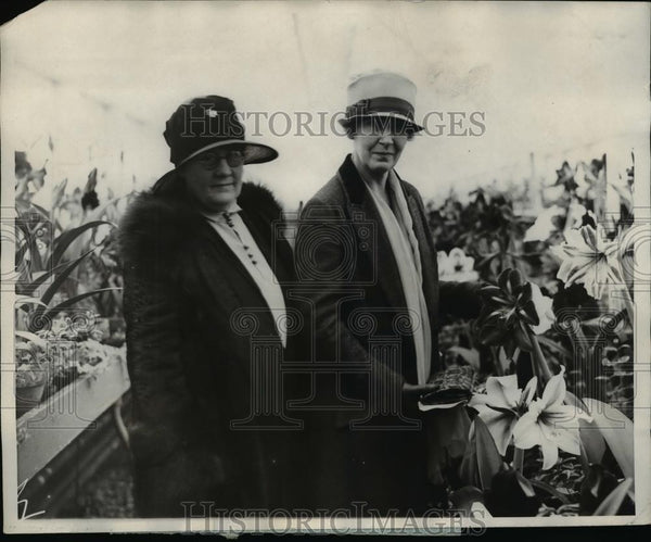 1926 Press Photo Mrs William M Jardino Wife of the Secretary of Agriculture - Historic Images