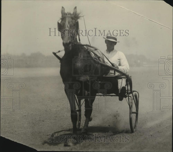 1921 Press Photo Trotter horse & driver at practice at a track - net31146 - Historic Images