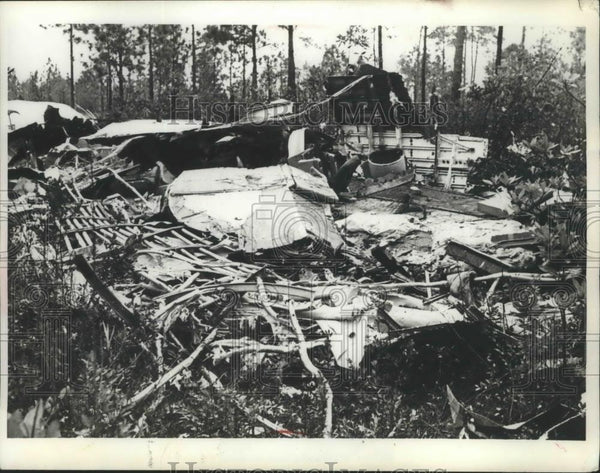 1901 Press Photo Scene of Plane Crash in Wilmington N.C in which 34 was killed - Historic Images