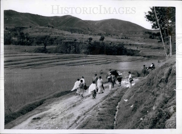 Expedition Team Heads Through Rice Fields - Historic Images