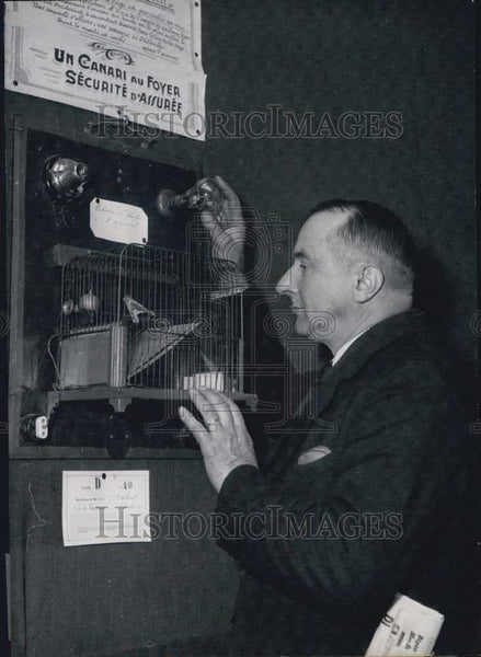 "Press Photo Autumn exposition reveals the new ""canary"" home security system. - Historic Images"