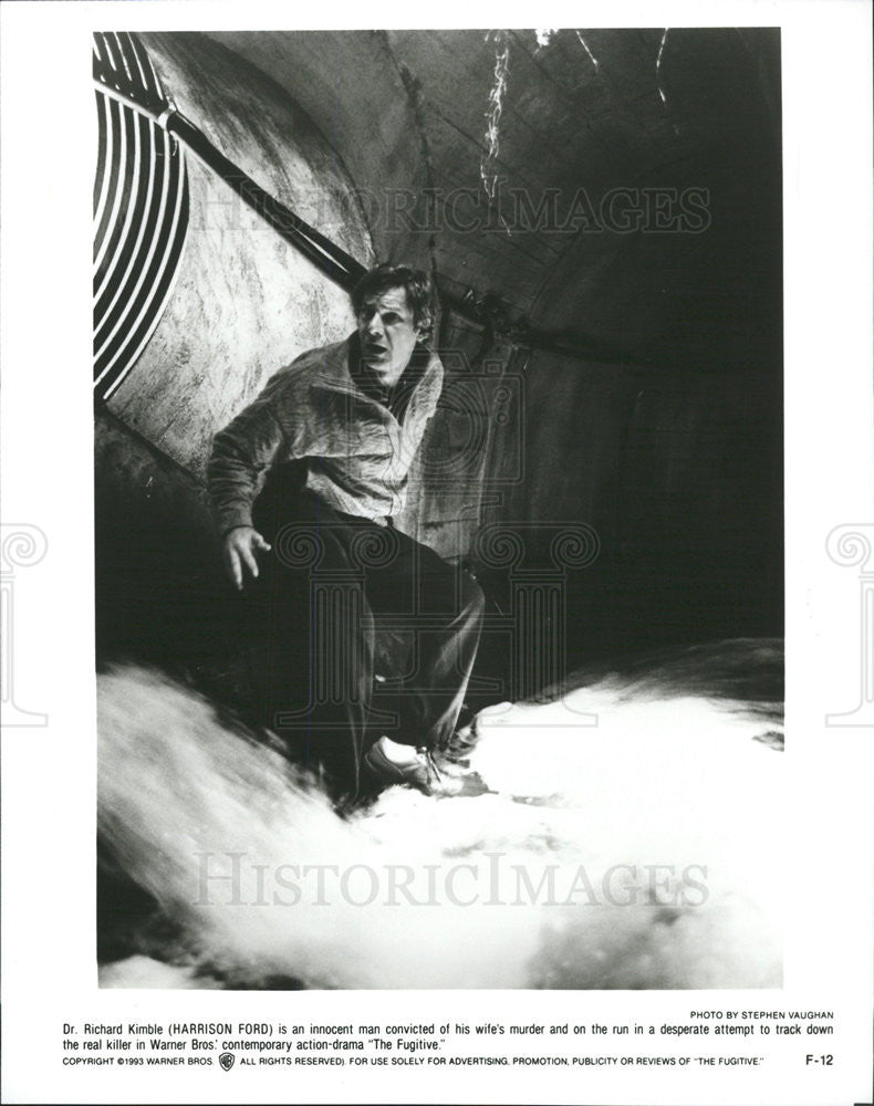 1993 Press Photo The Fugitive Harrison Ford - Historic Images
