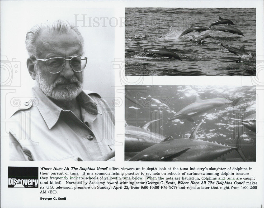 "Press Photo ""Where Have All the Dolphins Gone?"" - Historic Images"