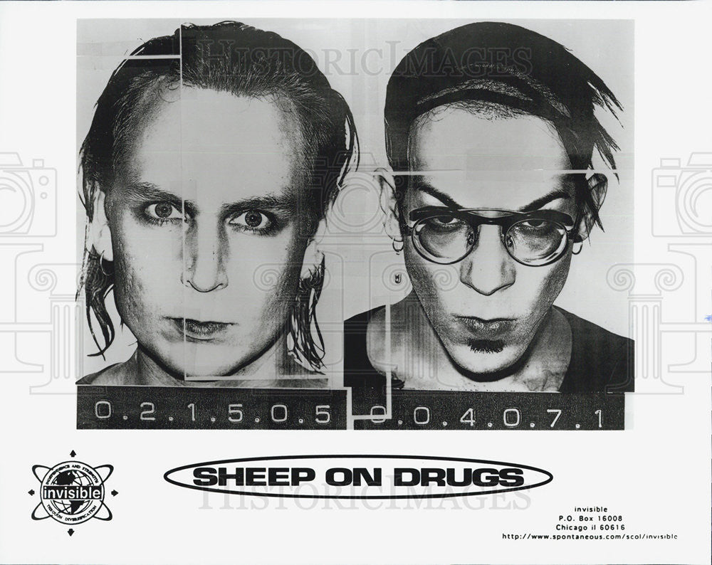 Press Photo Musician entertainer Sheep On Drugs - Historic Images