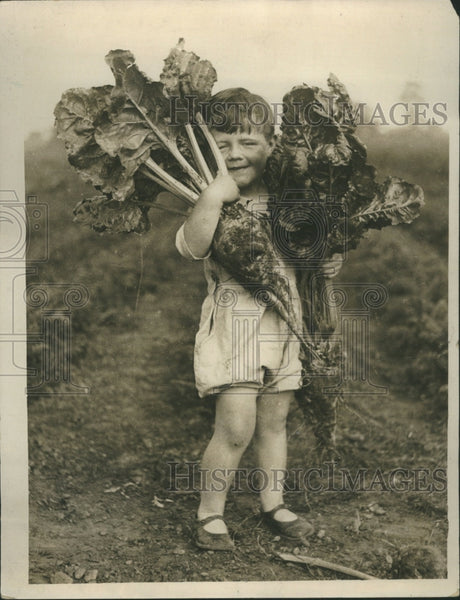 1929 Person Farmer Crop Agriculture Grain - Historic Images