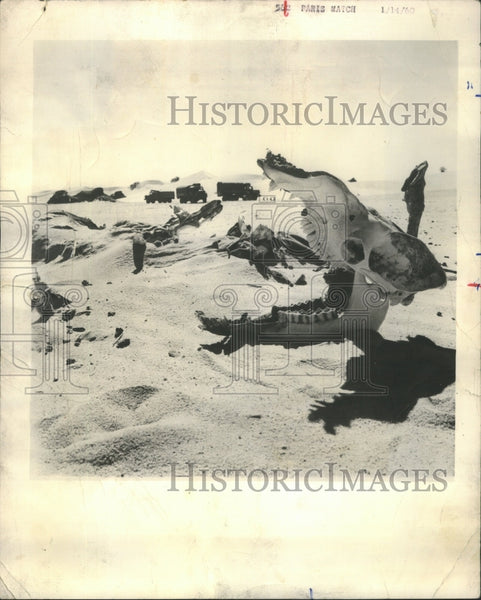 1960 Press Photo French Expedition in Sahara Desert