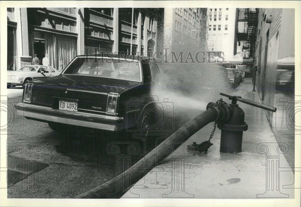 1981 Press Photo Fire Hydrants - RRW53705 - Historic Images