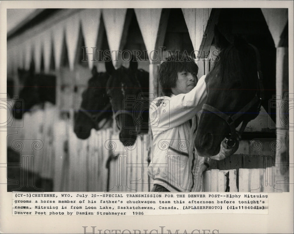 1986 Press Photo ELPHY MITSUING HORSE RACE - RRW86469 - Historic Images