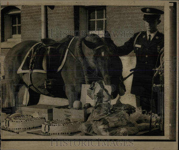 1972 Press Photo Black Jack the riderless horse of pres - RRW86503 - Historic Images