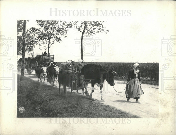 1918 Press Photo Refugees Fleeing Scene Along The Marne - Historic Images