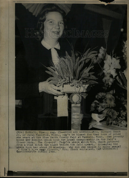 1966 Press Photo Blue Earth County Flower Show Winner - Historic Images