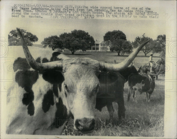 1968 Press Photo Texas Longhorns San Antonio Kansas - Historic Images