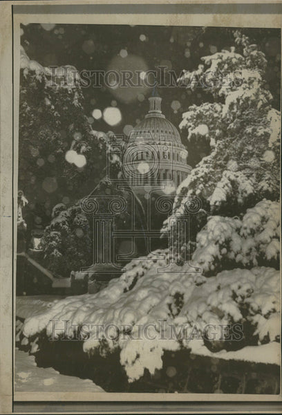 1967 Press Photo Snow coat US Trees Beauty Bedecked Season - Historic Images