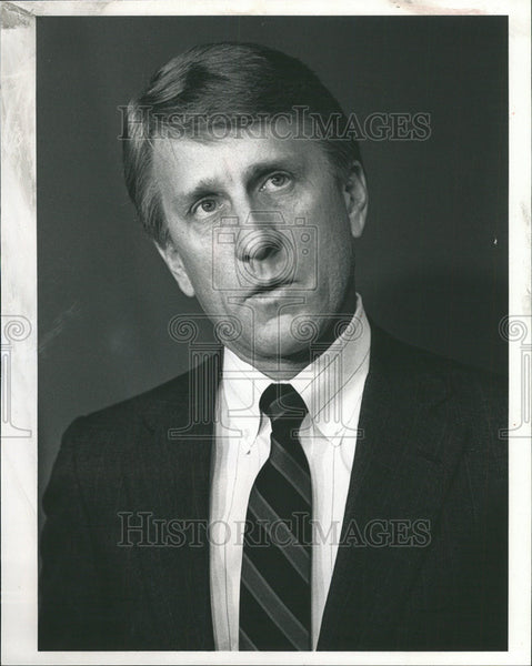 1989 Press Photo Regional Transportation Authority Chairman Gayle Franzen - Historic Images