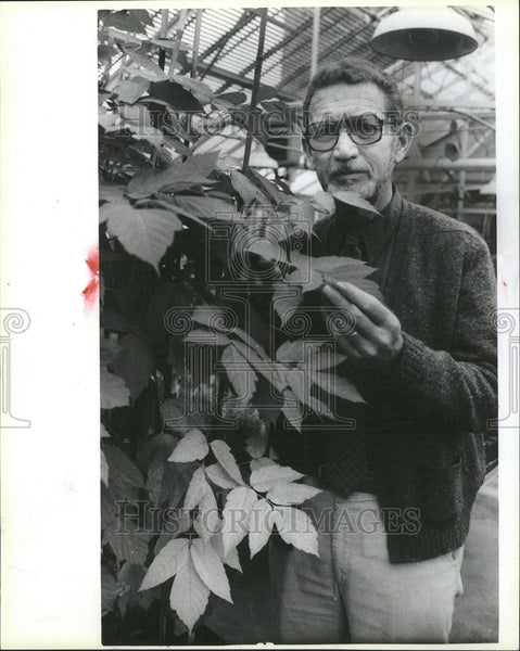 1985 Press Photo CHARLES LEWIS HORTICULTURIST - Historic Images