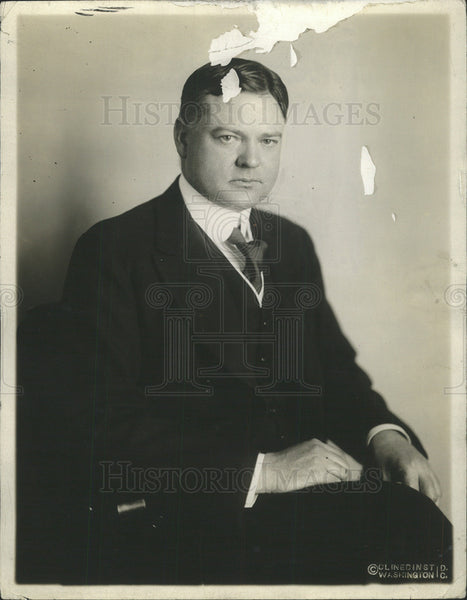 1917 Press Photo HERBERT HOOVER PRESIDENT UNITED STATES - Historic Images