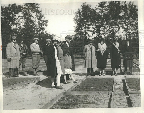 1930 Press Photo Forests Reforestation In Detroit, Pine Seed Beds At Nursery - Historic Images