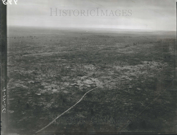 1930 Press Photo Aerial Fife Lake District Reforestation - Historic Images