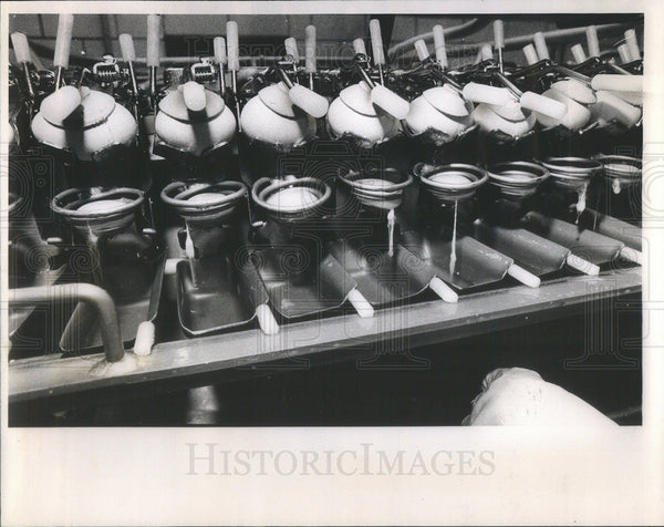 1981 Press Photo Egg Breaking Machine Schneider Brothers Dairy Production - Historic Images