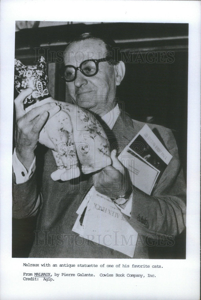 1971 Press Photo Andre Malraux, French novelist. - Historic Images