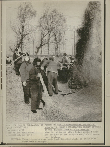 1974 Press Photo Rice Collected Nanyuan People's Commune - Historic Images