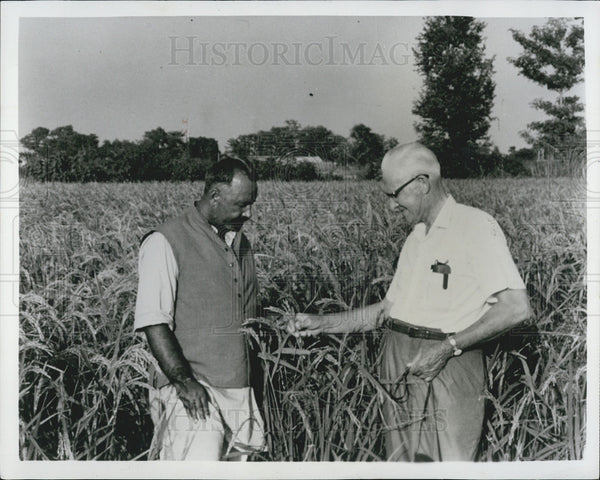 1966 Press Photo of Ed Bay,American Farm Adviser from Sangamon,illonois. - Historic Images