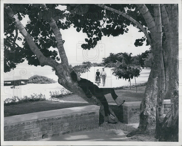 1956 Press Photo of women relaxing on a tree at a Jamaican beach - Historic Images
