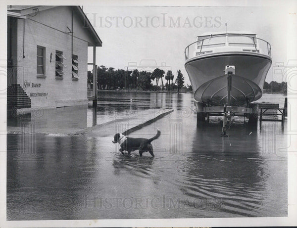 1970 Press Photo Hurricane Becky Causes Pithlachascotee River Flooding - Historic Images