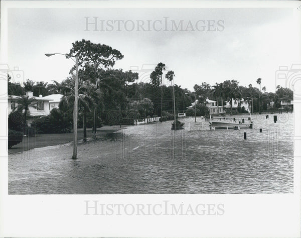 1982 Press Photo Flooding St. Petersburg Florida - Historic Images
