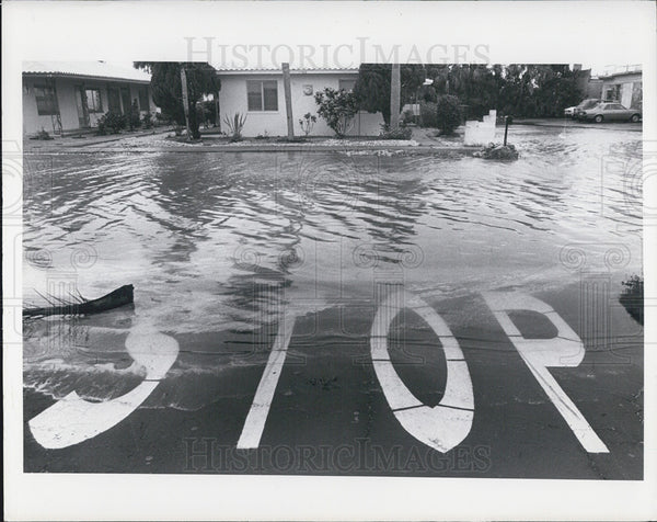 Press Photo Flooded Street St. Petersburg Florida - Historic Images
