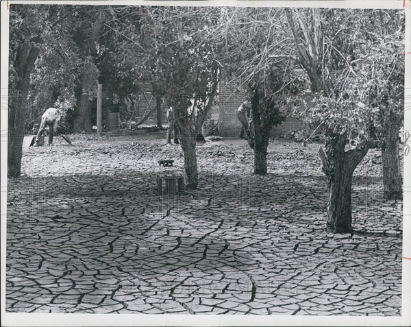 1965 Press Photo Carbone home covered with cracking dried mud from floods - Historic Images