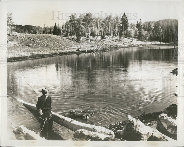 Press Photo Small ponds stocked w/ trout found in mountain country New Mexico - Historic Images