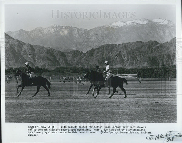 1982 Press Photo Polo Playing on Palm Springs California - Historic Images