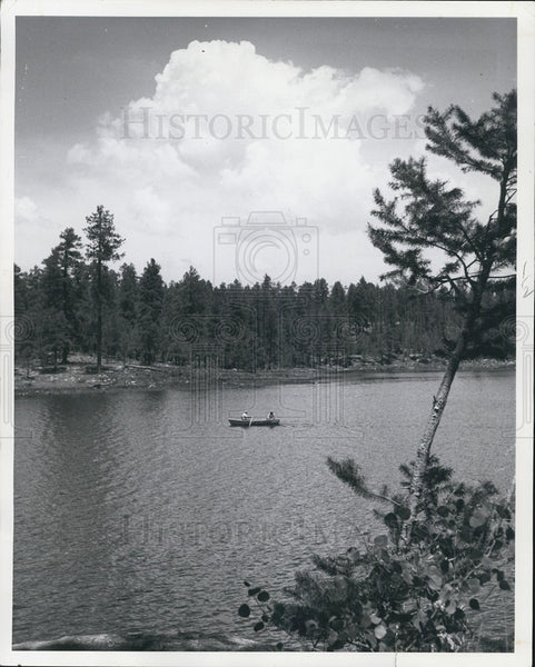 1966 Press Photo Woods Lake in Magollon Rim in Arizona - Historic Images