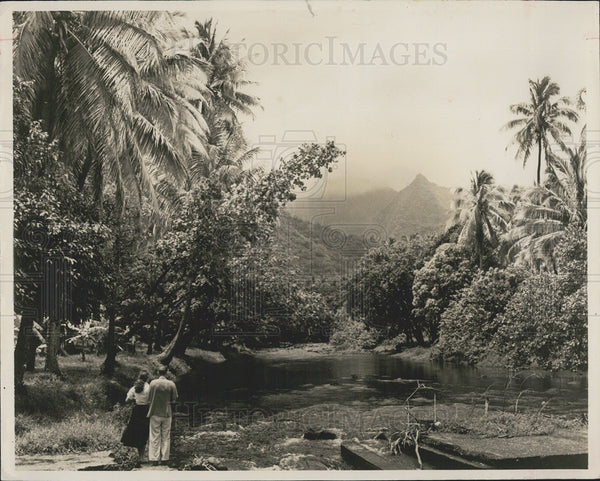 1959 Press Photo Tropical Forests In New Guinea - Historic Images