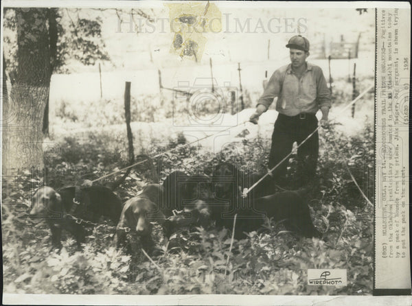 1936 Press Photo Dogs & police hunt for escaped convicts in Oklahoma - Historic Images