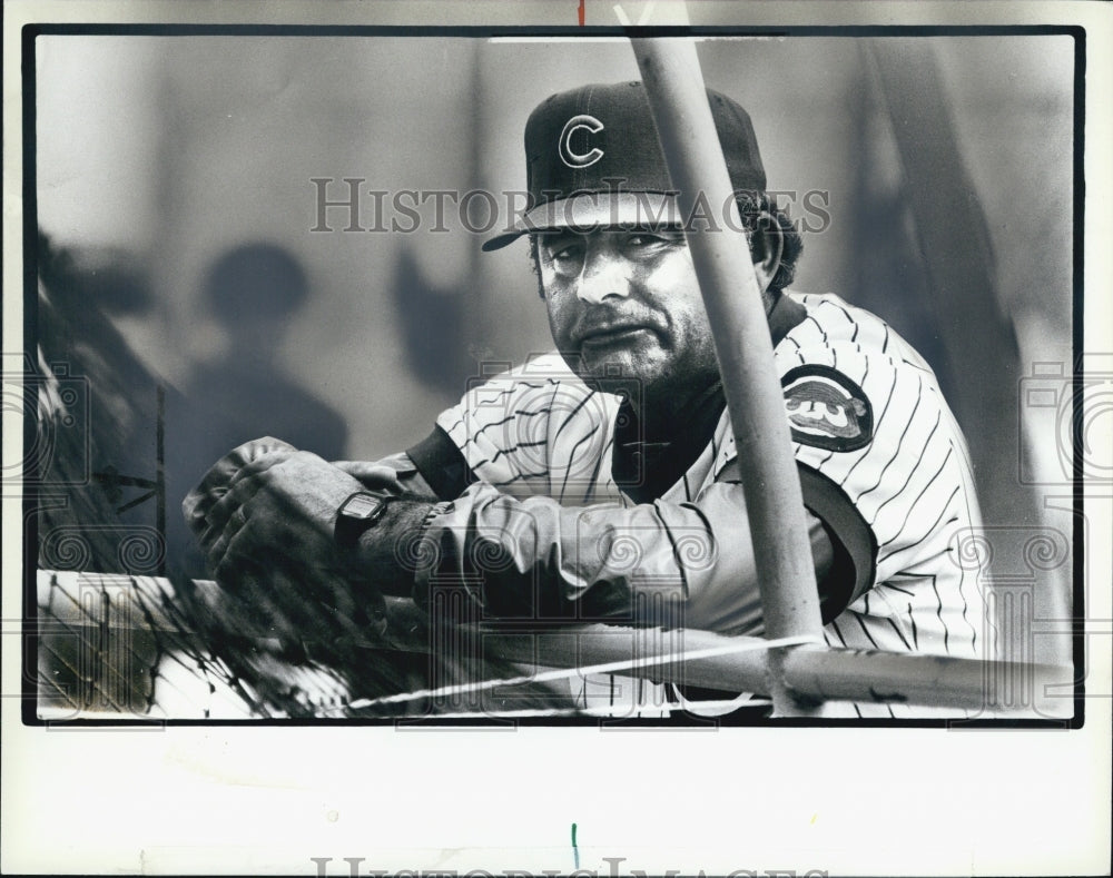 1983 Press Photo Cubs Sprin Training manager Lee Elia - Historic Images