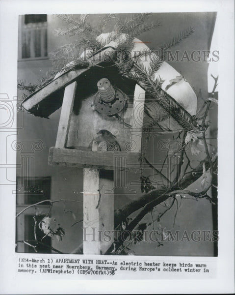 1956 Press Photo Bird Nest with electric heater - Historic Images